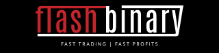 Flash Binary Logo