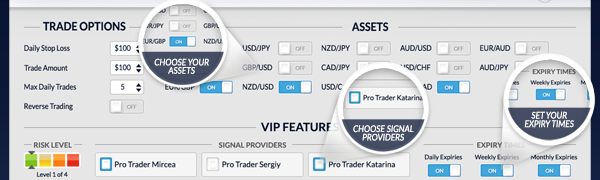Forex Binary Options Signals Strategy Performance