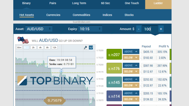 TopBinary Brokers Software Review